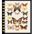 Papillon - BIG Happy Planner - Daily - 4 month